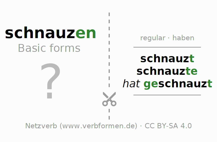 Flash cards for the conjugation of the verb schnauzen