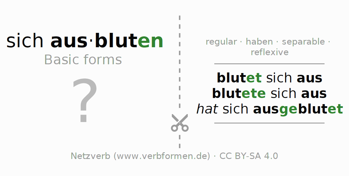 Flash cards for the conjugation of the verb sich ausbluten (hat)