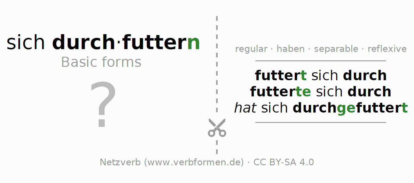 Flash cards for the conjugation of the verb sich durchfuttern