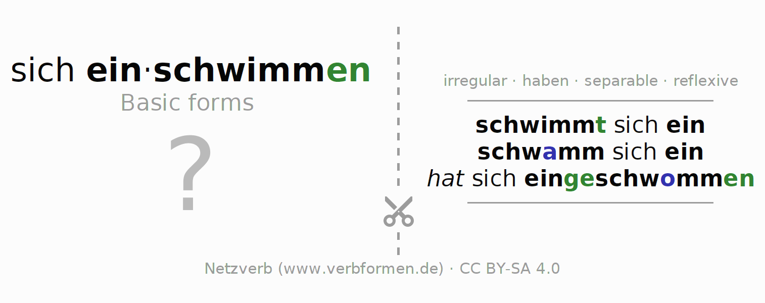 Flash cards for the conjugation of the verb sich einschwimmen