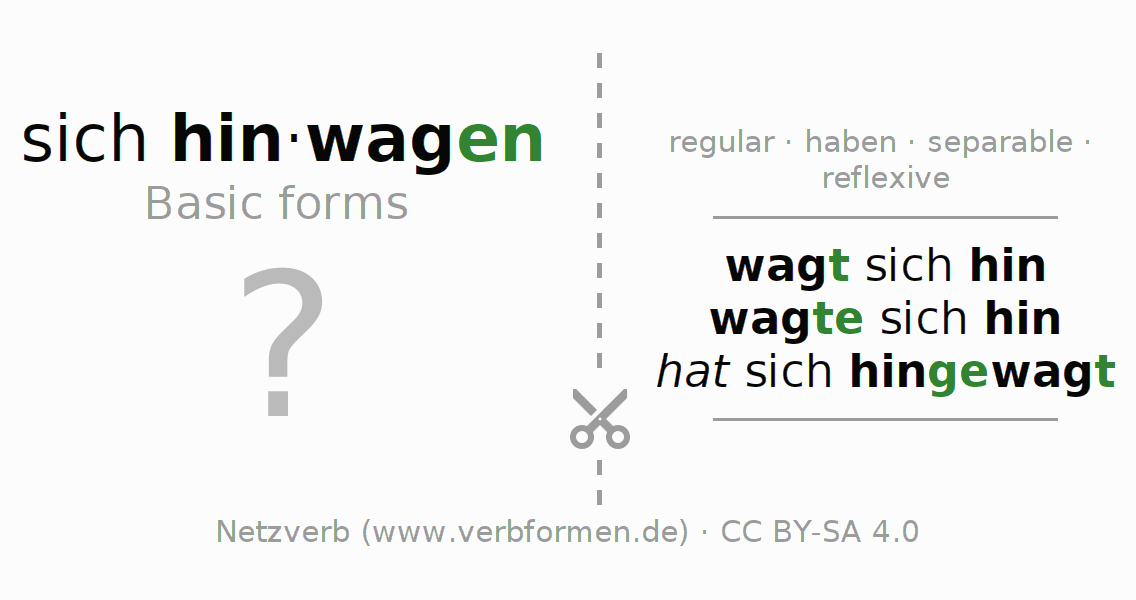 Flash cards for the conjugation of the verb sich hinwagen
