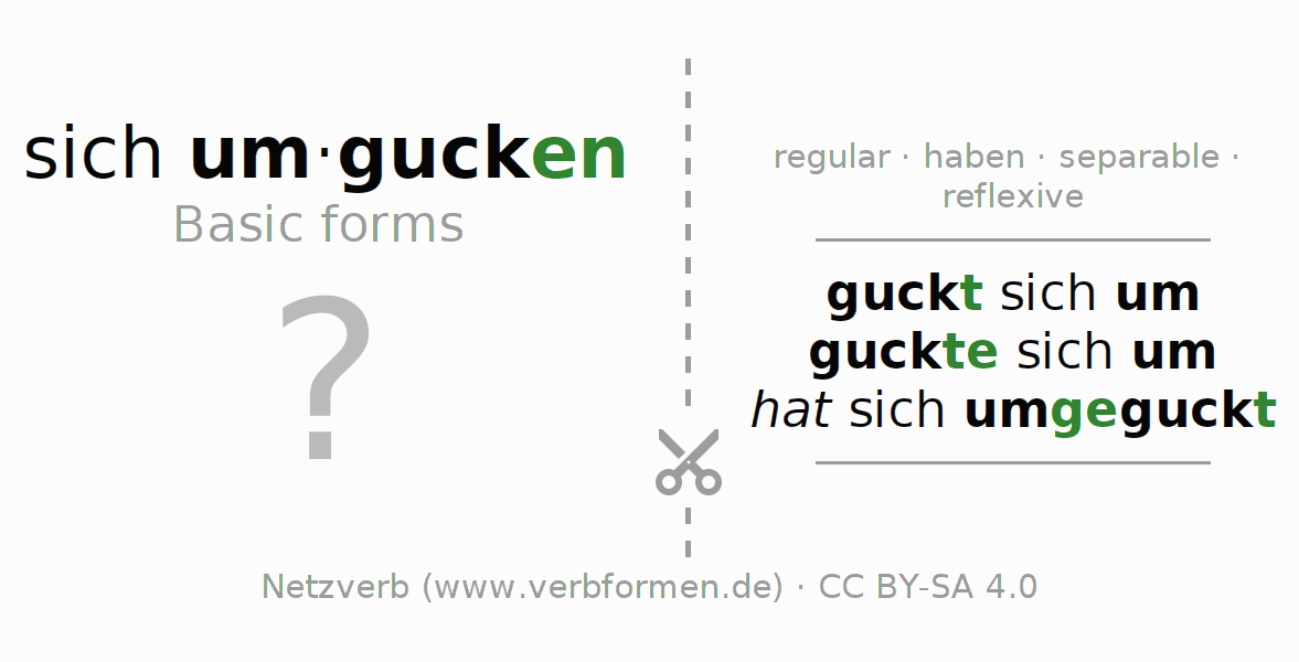 Flash cards for the conjugation of the verb sich umgucken