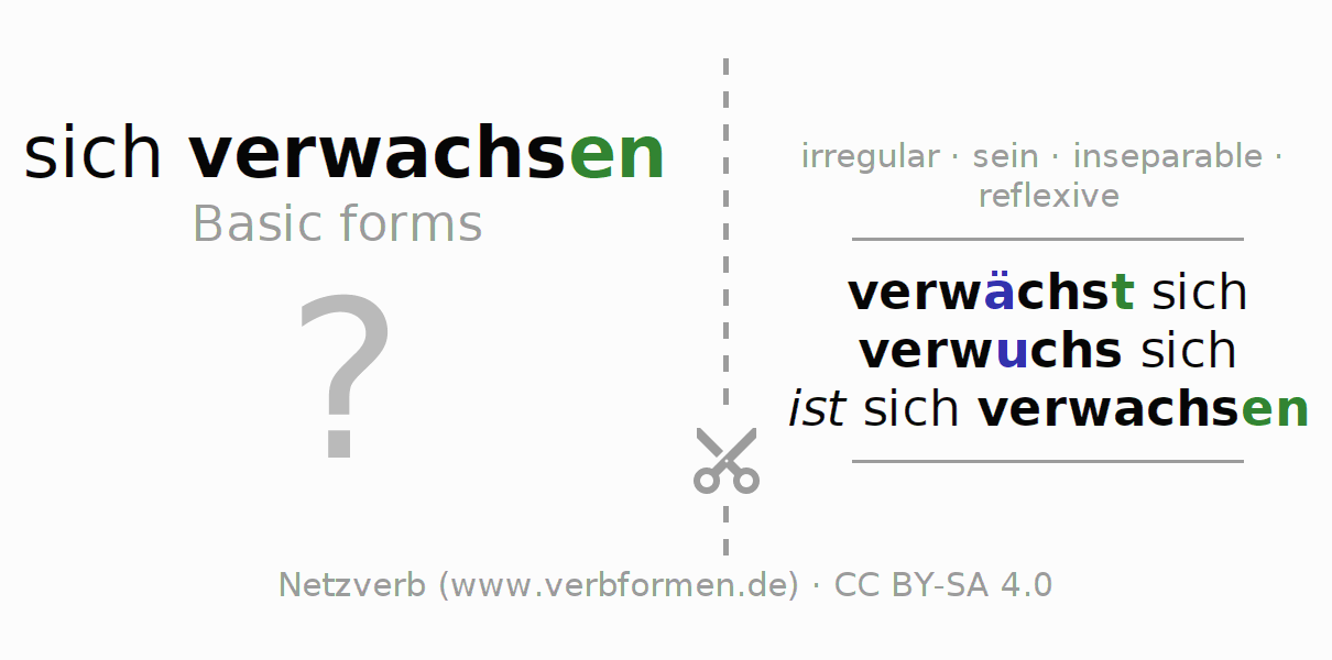 Flash cards for the conjugation of the verb sich verwachsen (unr) (ist)