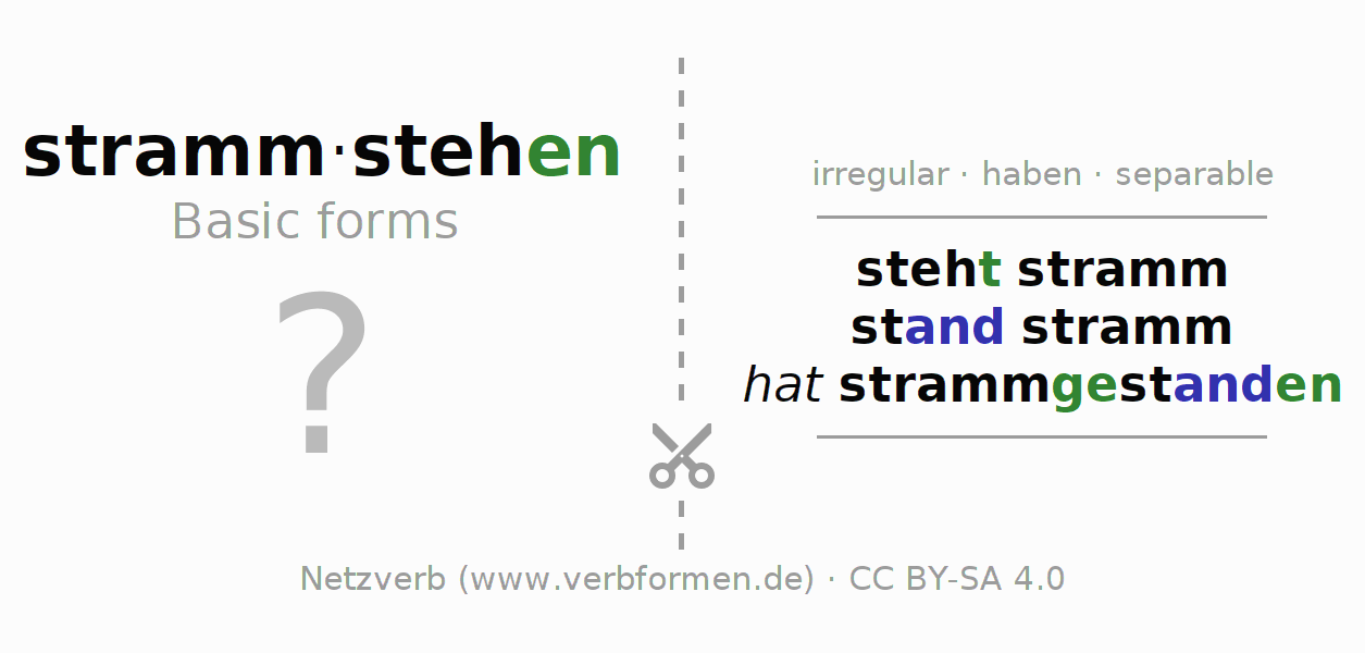 Flash cards for the conjugation of the verb strammstehen (hat)