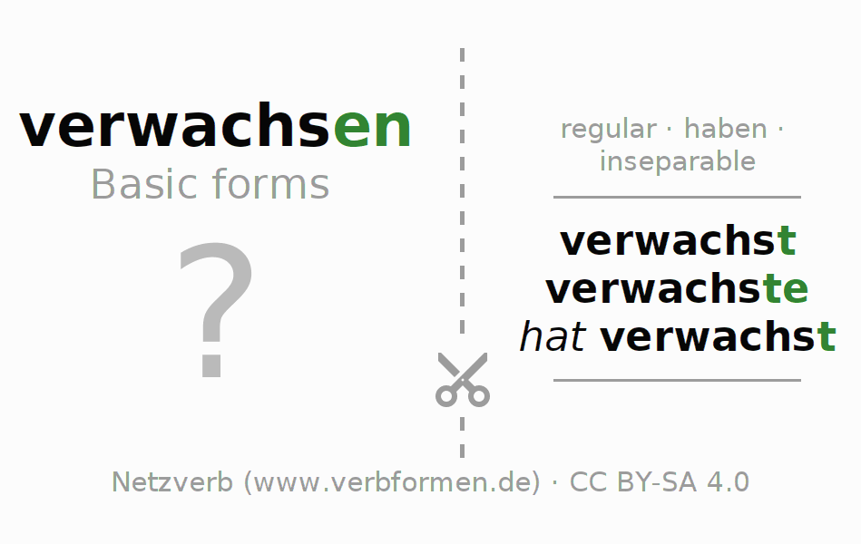 Flash cards for the conjugation of the verb verwachsen (regelm) (hat)