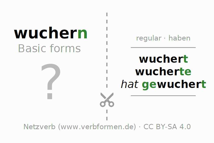 Flash cards for the conjugation of the verb wuchern (hat)