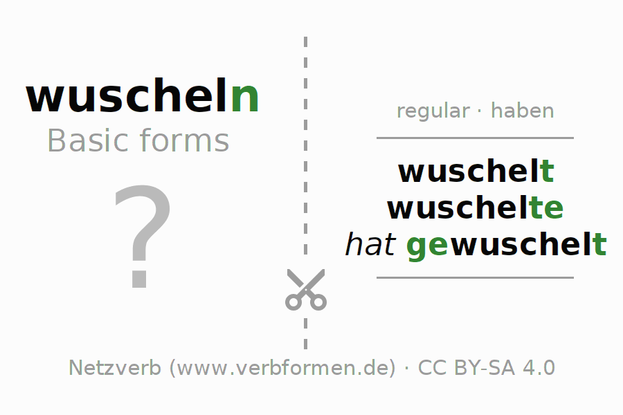 Flash cards for the conjugation of the verb wuscheln