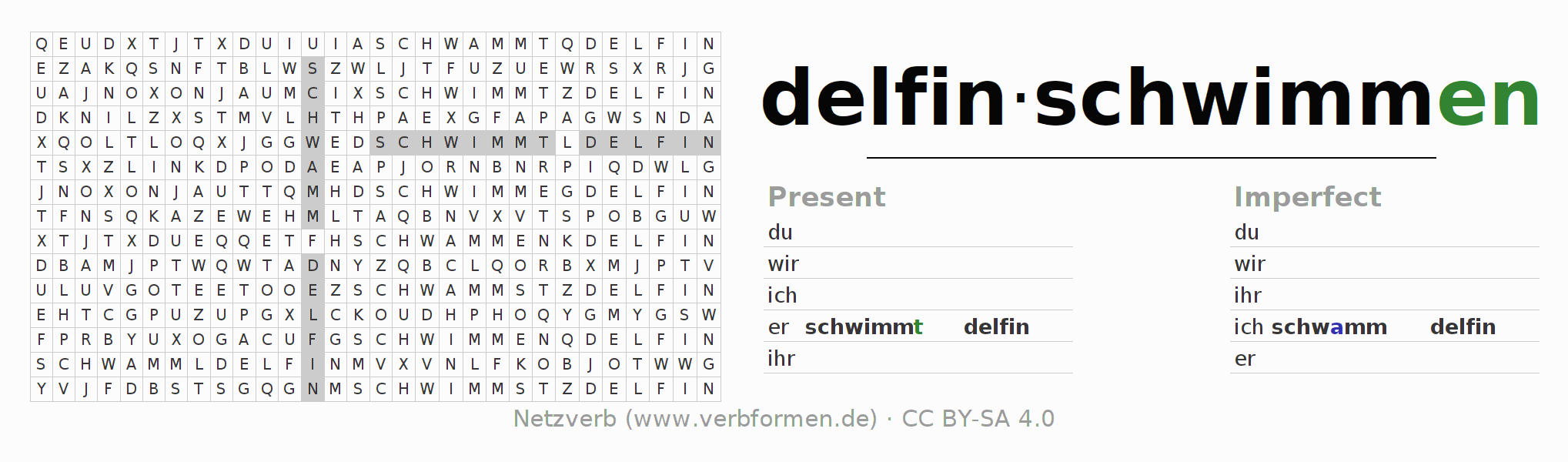 Word search puzzle for the conjugation of the verb delfinschwimmen (ist)