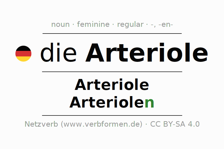 Declension | Arteriole | All Forms, Plural, Rules and Downloads