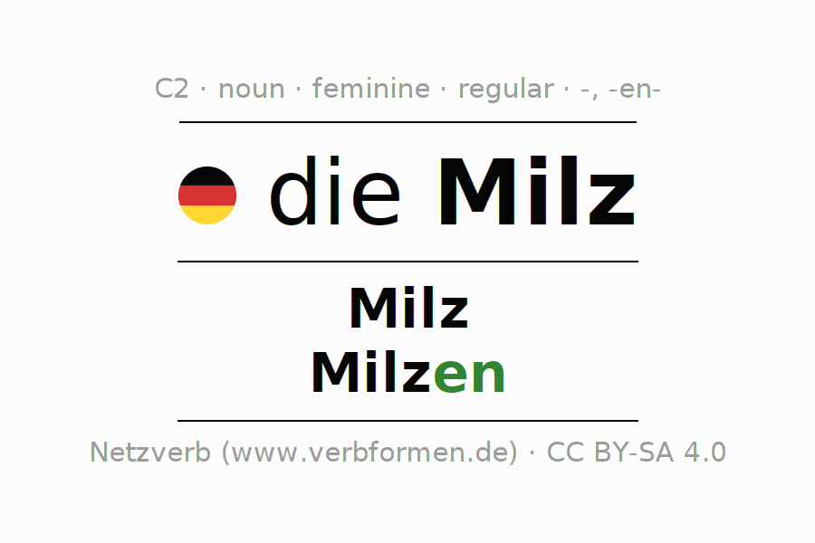 Declension | Milz | All Forms, Plural, Rules and Downloads