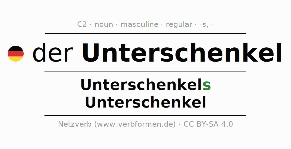 Declension | Unterschenkel | All Forms, Plural, Rules and Downloads