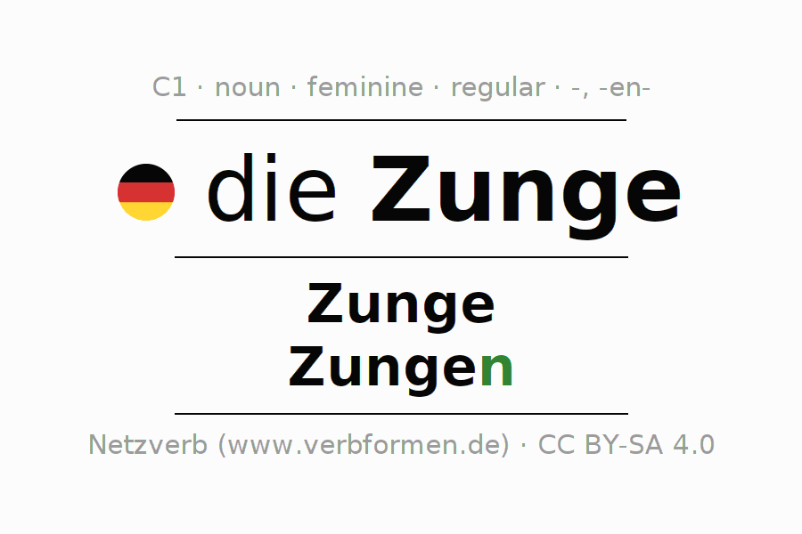 Declension | Zunge | All Forms, Plural, Rules and Downloads